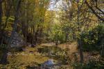 foto2 Centro Ecoturismo Albergue Rural Barbatona