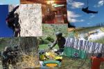 Oferta Albergue Rural