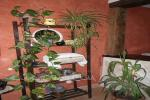 Casa rural San Juan