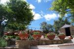 foto Jardín Casas de Almajar