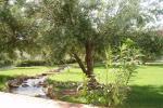 foto3 Apartamentos Rurales Los Llanos