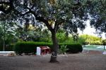 foto3 Casa Rural La Dehesa