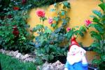 foto Jardin VIII