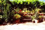 foto2 Palacio de los Condes de Rodezno