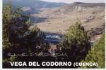 Vega del Codorno