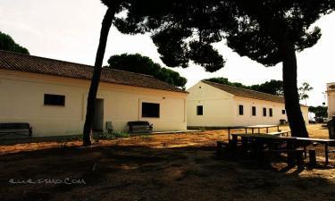 Albergue rural Territorio del Gato en Cartaya (Huelva)