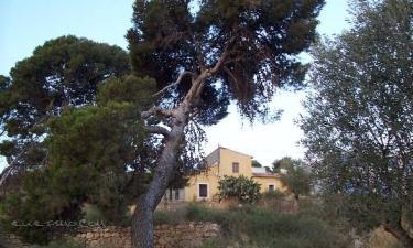 Tierra de Ifre en Mazarrón (Murcia)