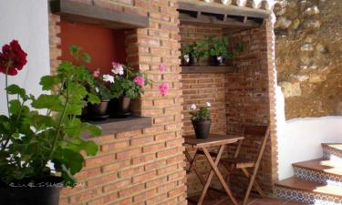 Apartamentos El Patio Andaluz en Jerez de la Frontera a 9Km. de Estella del Marqués