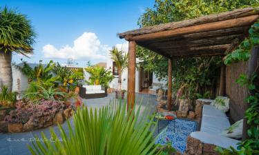 Finca Botanico Apartamento Jardin en Guatiza (Las Palmas)