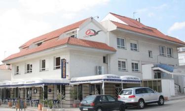 Apartamento Ornis en Sant Carles de la Ràpita a 22Km. de Deltebre