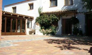 Casa Rural La Fuensanta en Peñas de San Pedro (Albacete)