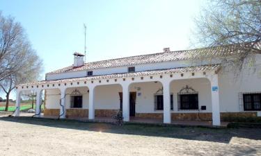 4 Vientos-San Antonio en Pétrola a 27Km. de Pozo-Cañada