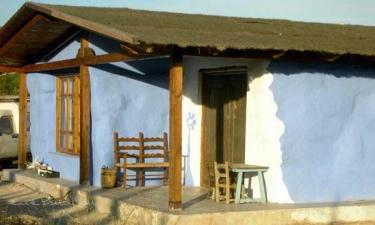 Casa Rural Casasdecolores en Crevillente a 25Km. de Maitino