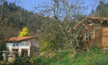 Sri Yogananda en Villaviciosa (Asturias)