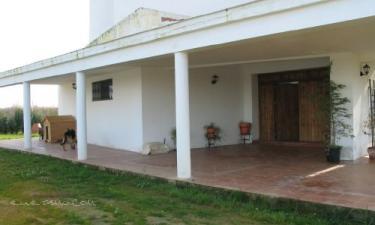 Casa Rural Torreáguila en Barbaño a 36Km. de Mérida