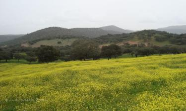 Sierra de Tentudia en Calera de León a 49Km. de Zafra