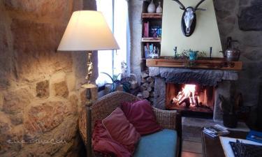 Casa Rural La Casa del Médico en Hontoria del Pinar a 11Km. de Muñecas