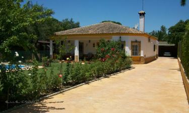 Casa rural Chaparrito en San José del Valle (Cádiz)