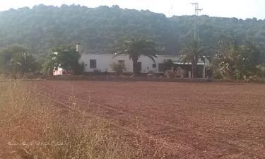 Casa Rural Santa Catalina en Villamartín a 40Km. de El Coronil
