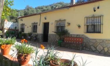 Casa rural Antonio parra en Prado del Rey a 16Km. de Villamartín
