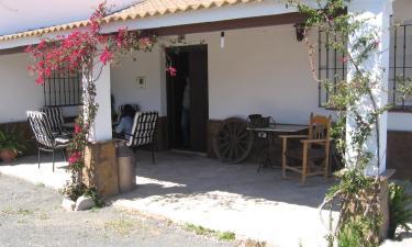 Casa Puerta de la Sierra en Prado del Rey a 16Km. de Villamartín