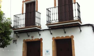 Apartamentos Rurales Iptuci en Prado del Rey (Cádiz)