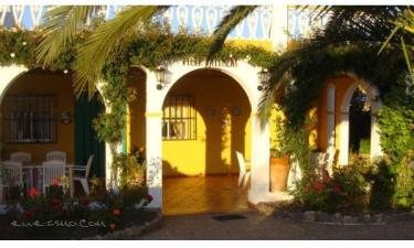 Villa Filomena en Olvera a 16Km. de Setenil de las Bodegas