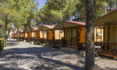 Cabañas Altomira en Navajas a 7Km. de Gaibiel