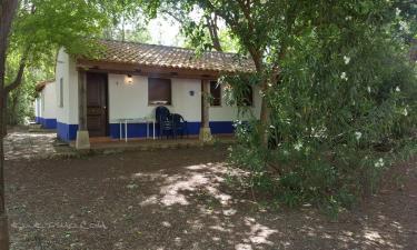Casa Rural Los Arenales en Almagro a 30Km. de Daimiel