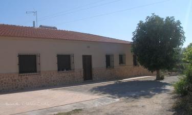 Casa Rural Quintaneira en Miguelturra a 24Km. de Torralba de Calatrava