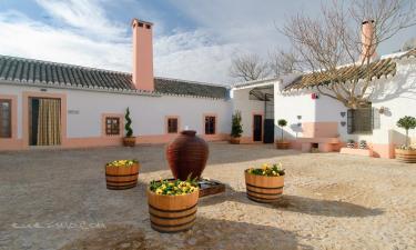Cortijo Sierra la Solana 1878 en Herencia a 34Km. de Cinco Casas