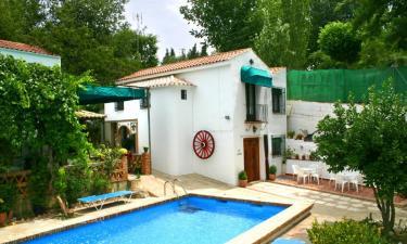 Casa Rural Arados en Priego de Córdoba (Córdoba)