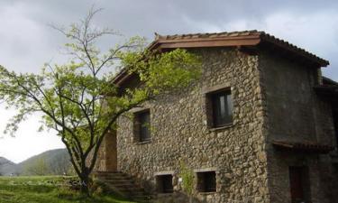 Roureda en Joanetes (Girona)
