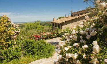 Mas Rovira en Banyoles (Girona)