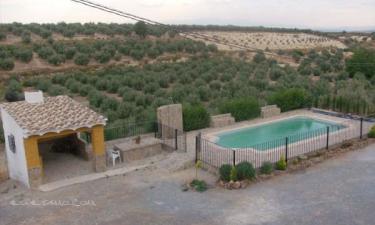 Casa Rural Cuevas del Pino en Cuevas del Campo (Granada)