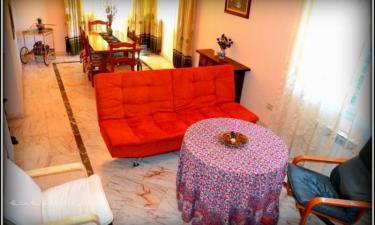 Casa Rural El Rincón de la Rosa en La Zubia a 17Km. de Peligros