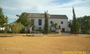 Alojamiento El Cortijuelo en Illora (Granada)