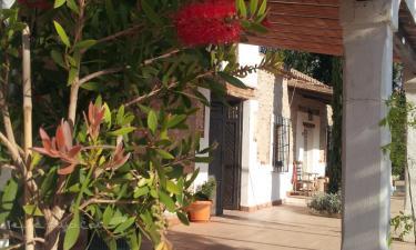 Cortijo Anchurones de San Pedro en Fonelas (Granada)