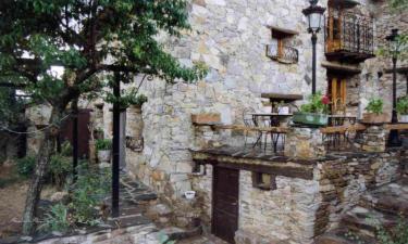 Las Peonías en Almiruete (Guadalajara)
