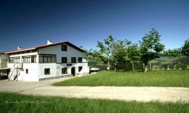 Casa Rural Agiña en Zestoa a 6Km. de Arroa Bekoa