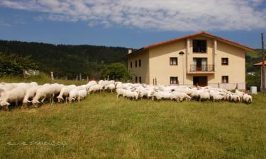 Casa Rural Ekoigoa en Aizarnazabal a 6Km. de Arroa Bekoa