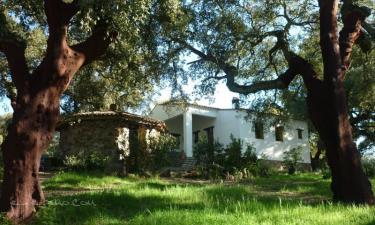 Casa el Chaparral de Aracena en Aracena a 8Km. de Corterrangel