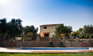 Casas Rurales Cazorla-Alcón en Pozo Alcón (Jaén)