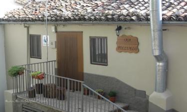 Casa Polluelo en Cazorla a 18Km. de Nava de San Pedro