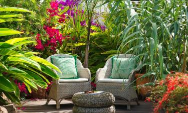 El Jardin Secreto a Finca Botanico en Guatiza a 35Km. de La Asomada
