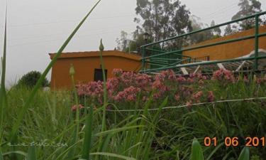 Casa Rural Pico de Osorio en Valleseco a 27Km. de Ingenio