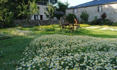 Casa Caxigueiro en Sarria (Lugo)