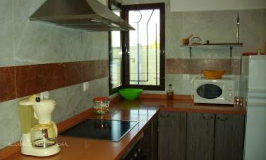 cocina  Olivar de Abuelos