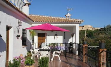 Casas rurales Finca las Posturas en Vélez-Málaga (Málaga)