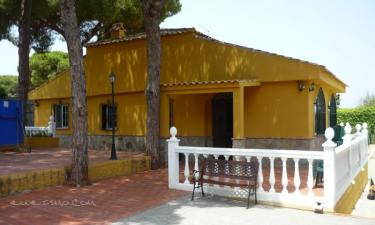 Villa Rural Pinos de Alhaurin